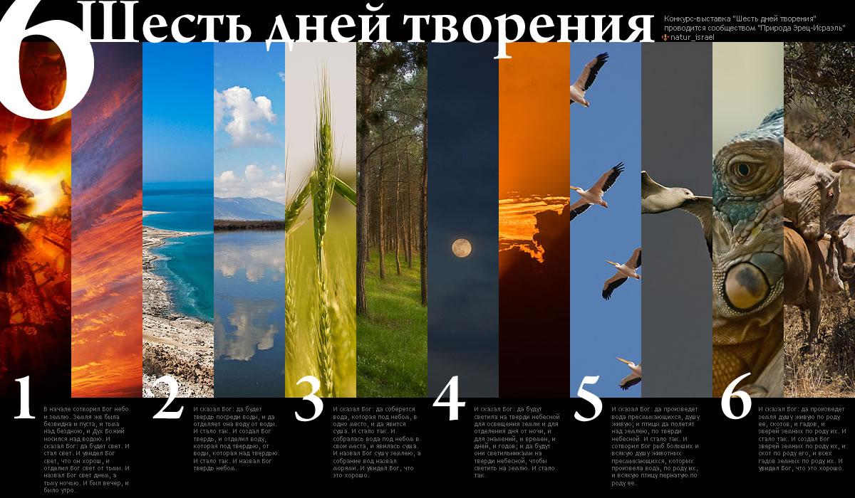 сотворение мира богом за 7 дней в картинках
